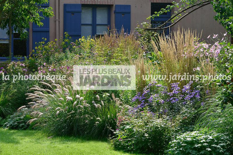 la phototh que les plus beaux jardins massif fleuri en automne plantes vivaces pennisetum. Black Bedroom Furniture Sets. Home Design Ideas