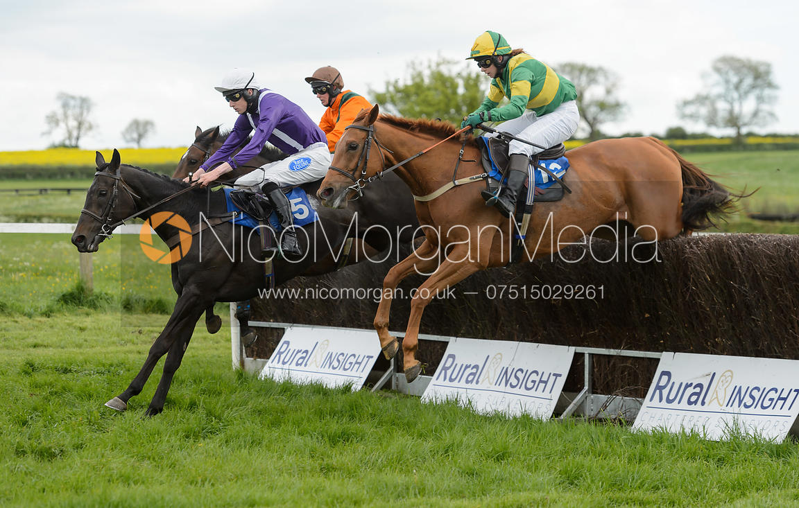Image Race 6 The Melton Hunt Club Point To Point 2017