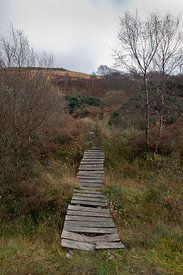 Boardwalk, Portavadie