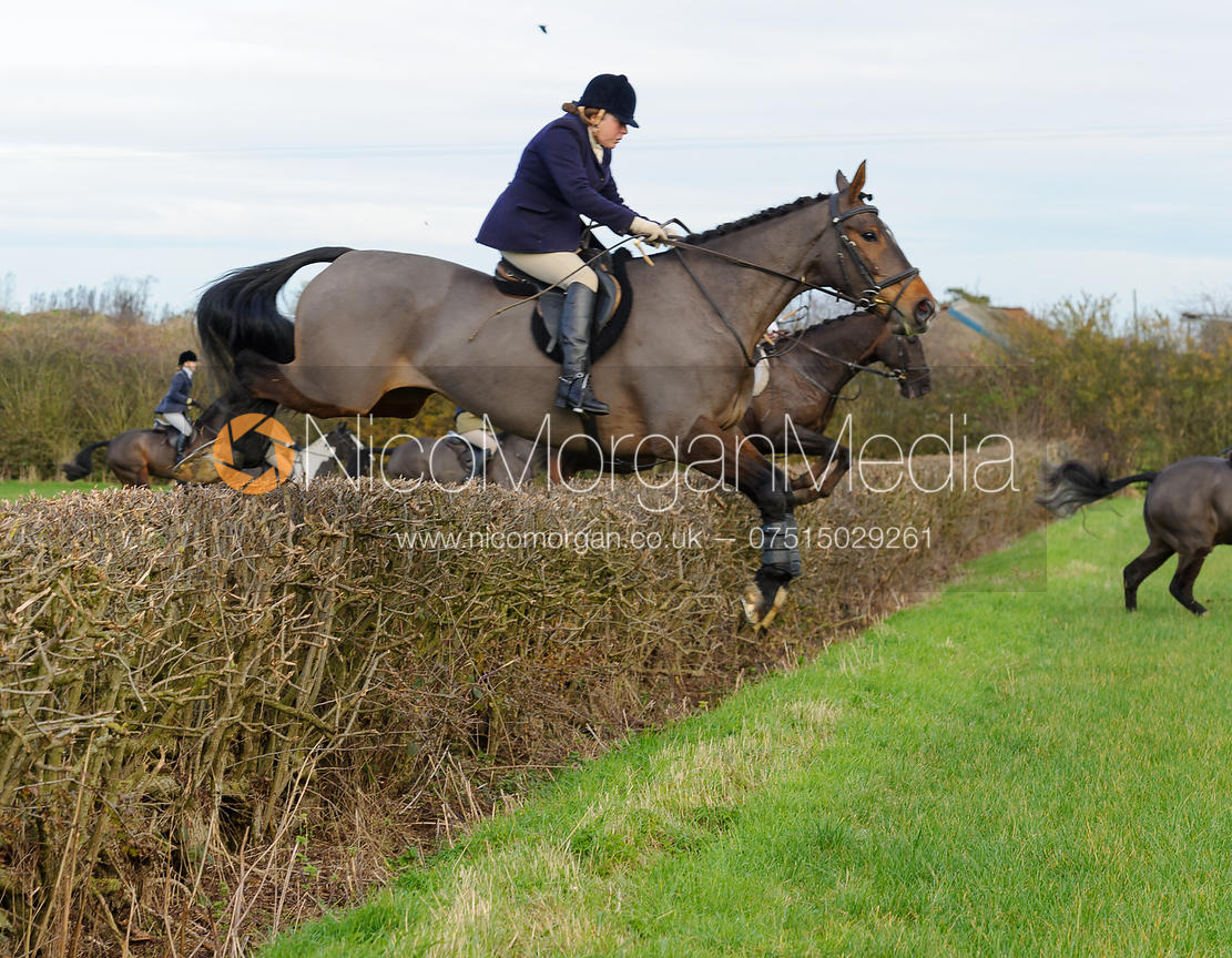 Image Jumping Hose Thorns The Belvoir Hunt At Colston