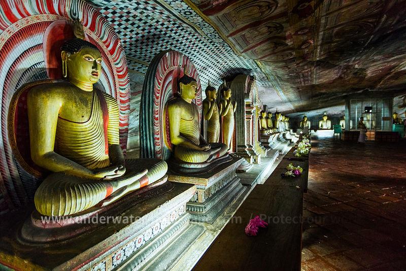 picture of buddha in Dambulla cave temple in sri lanka