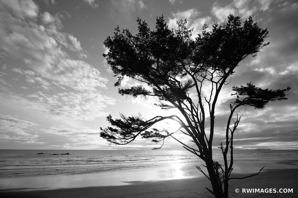 KALALOCH BEACH SUNSET OLYMPIC NATIONAL PARK WASHINGTON PACIFIC NORTHWEST COAST BLACK AND WHITE