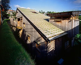 Nira house, roof