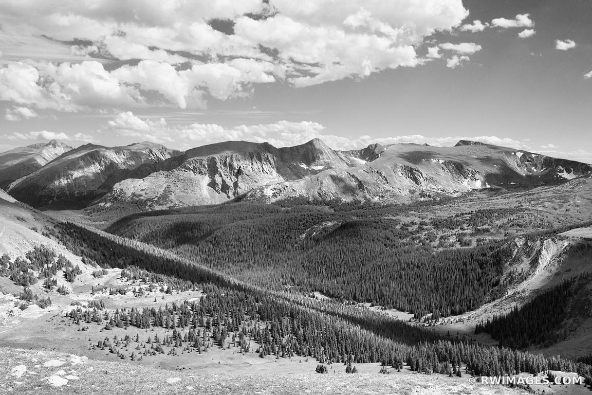 Photo print of forest canyon rocky mountain national park for Fine art photography sales