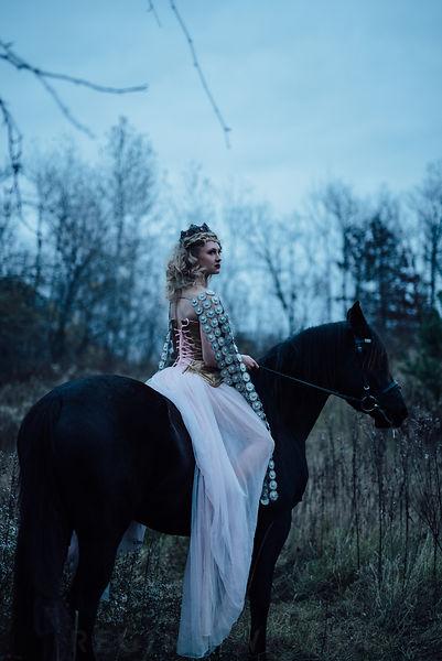 the stock alchemist fairytale couple prince princess