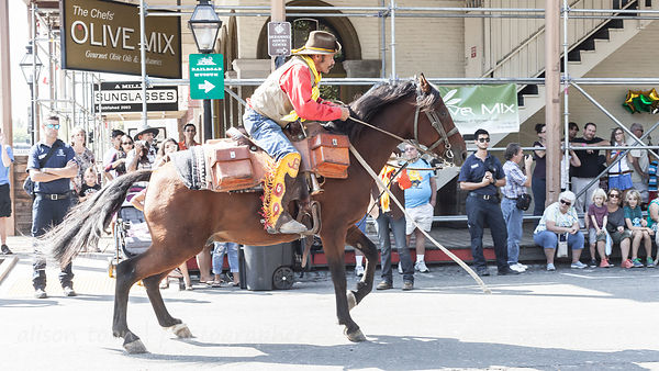Pony express,Gold Rush Days 2016