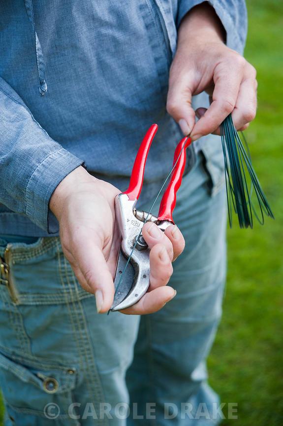 CAROLE DRAKE | Gardener Aimee Kingdom measures lengths of wire ...