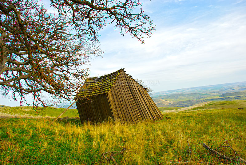 kathy mccullough photography old leaning shed