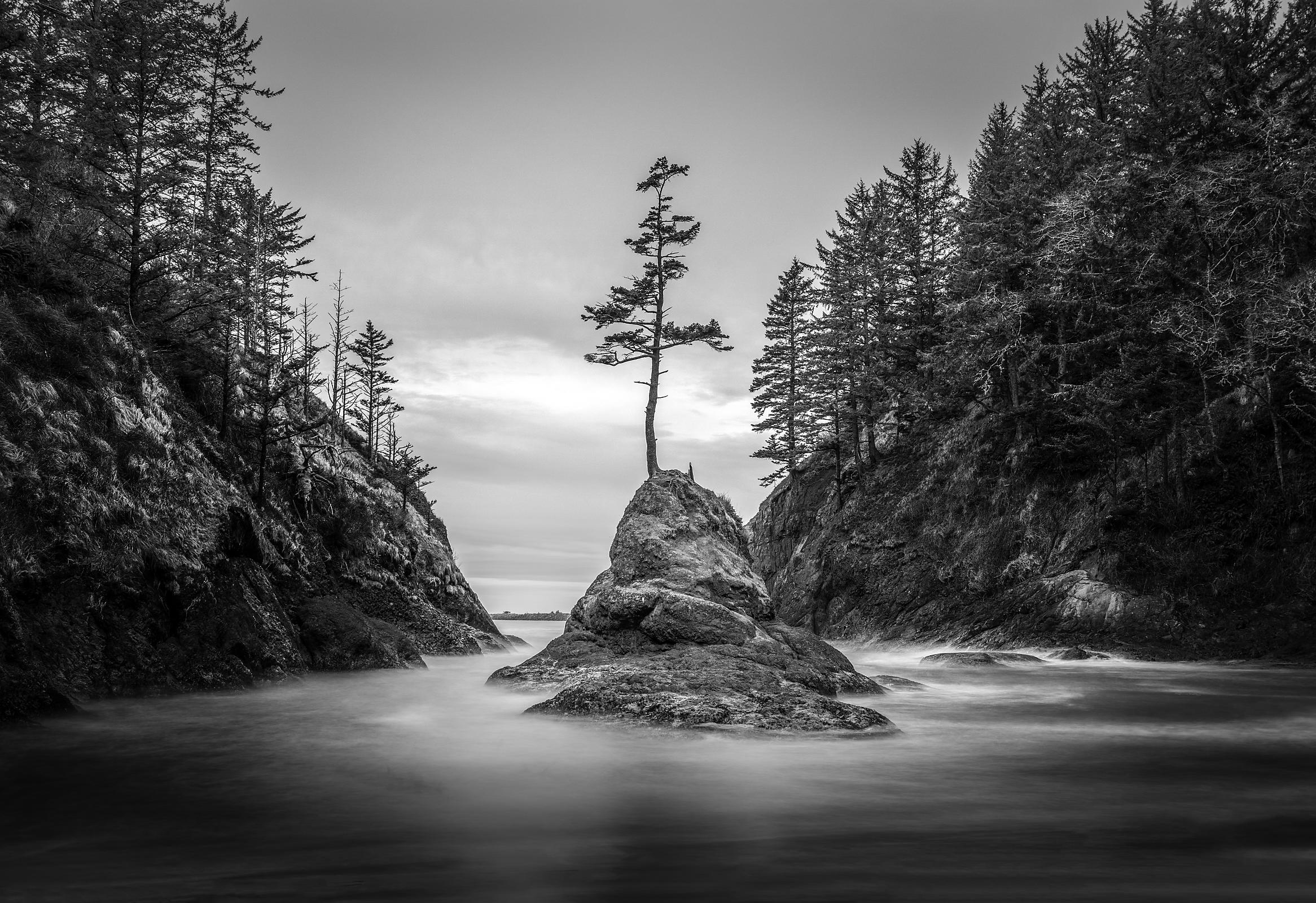 jeff ries photography isolation