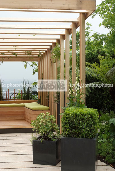 la phototh que les plus beaux jardins pergola en bois pot carr buxus sempervirens buis. Black Bedroom Furniture Sets. Home Design Ideas