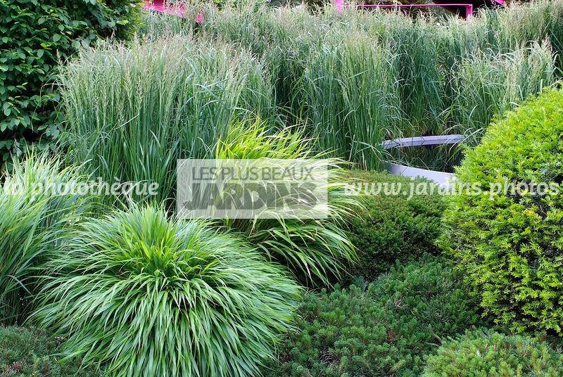 la phototh que les plus beaux jardins jardin de gramin es paysagiste diarmuid gavin cfs. Black Bedroom Furniture Sets. Home Design Ideas