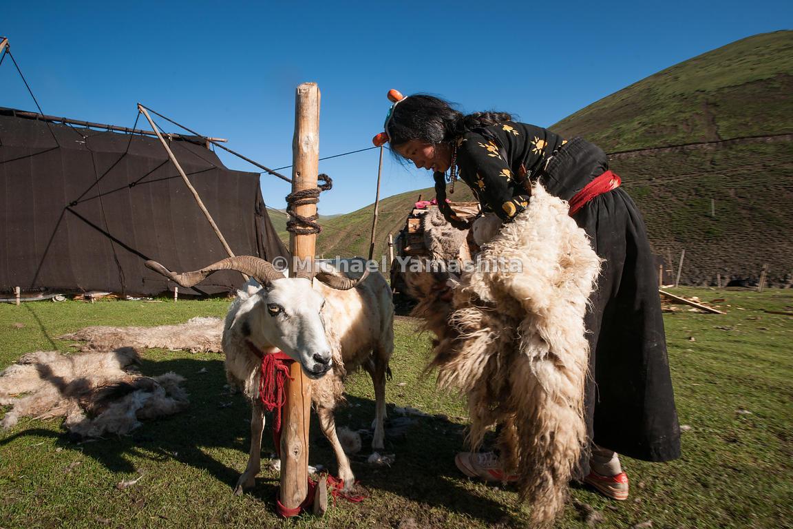 michaelyamashita chamadao route 317 nomad encampment outside