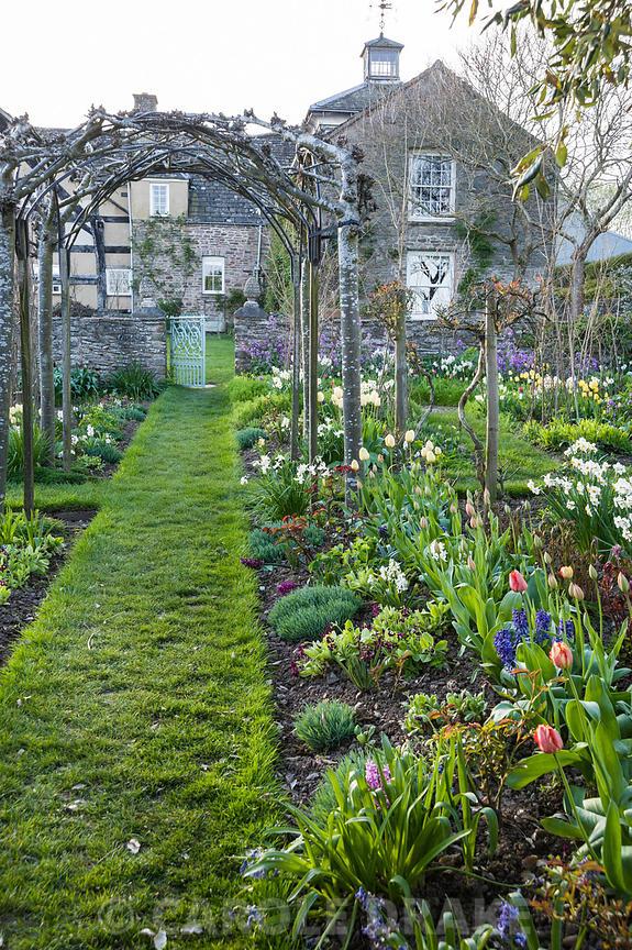CAROLE DRAKE   Grass path runs through the cutting garden below ...