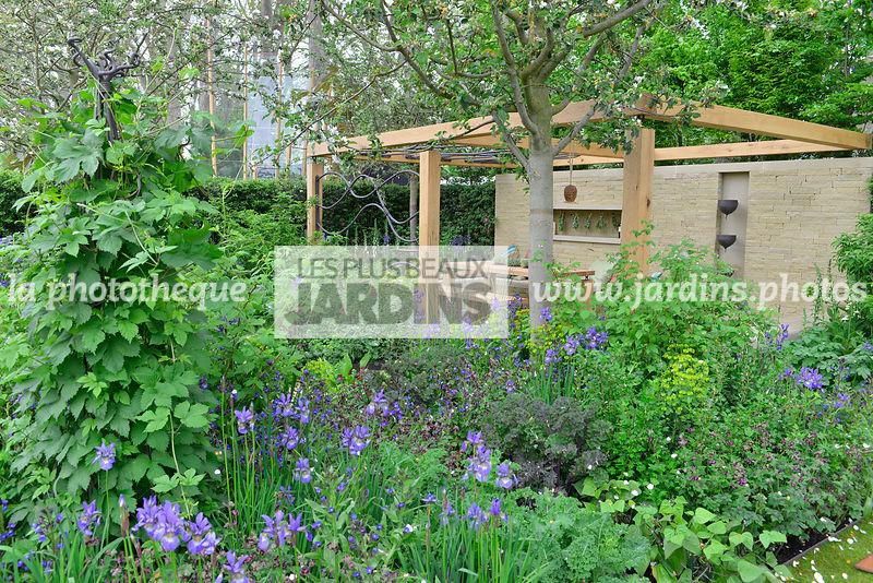 La Phototheque Les Plus Beaux Jardins Petit Jardin Urbain