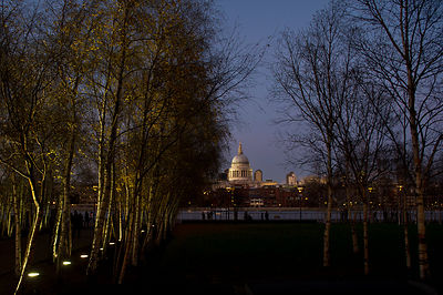 St Paul's with silver birches