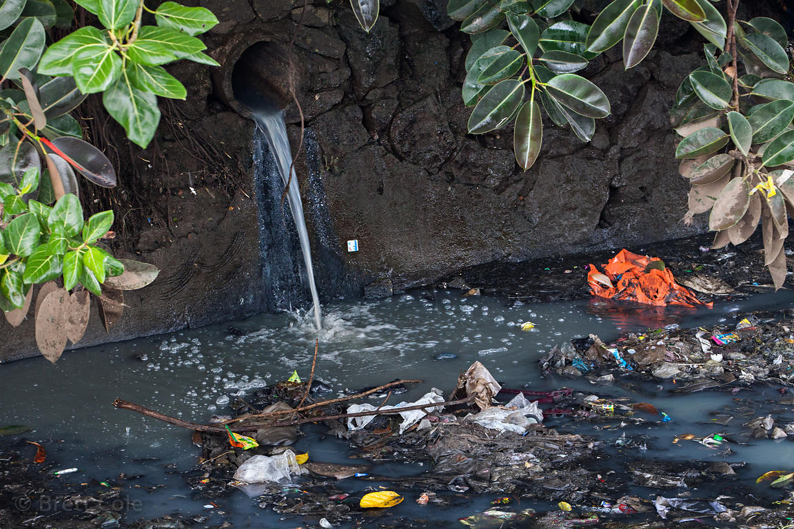 water contamination in mumbai Field survey on water supply, sanitation and associated increasing pollution in mumbai, particularly, the ratio and number of urban poor are ever.