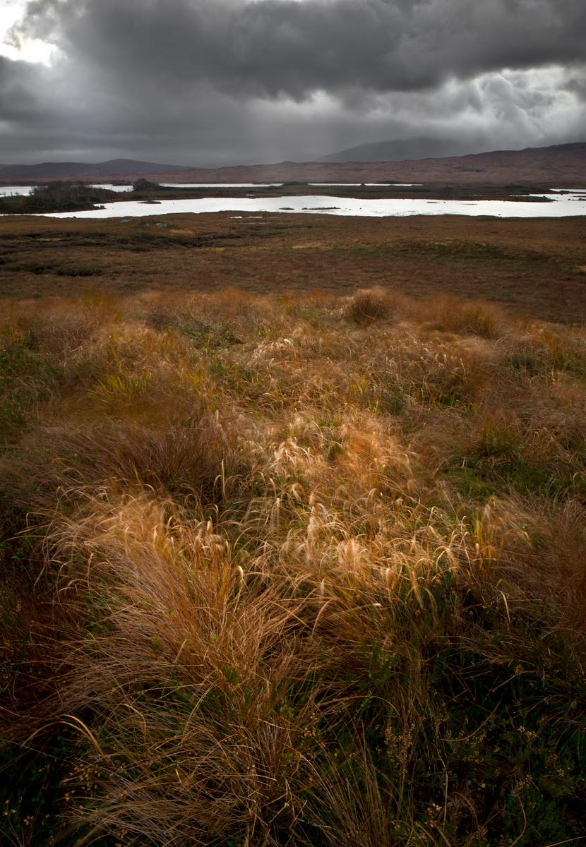Early morning Rannoch Moor