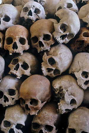 A pile of skulls and bones of executed victims of the Pol Pot regime
