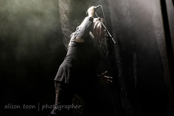Maynard James Keenan, vocals, A Perfect Circle