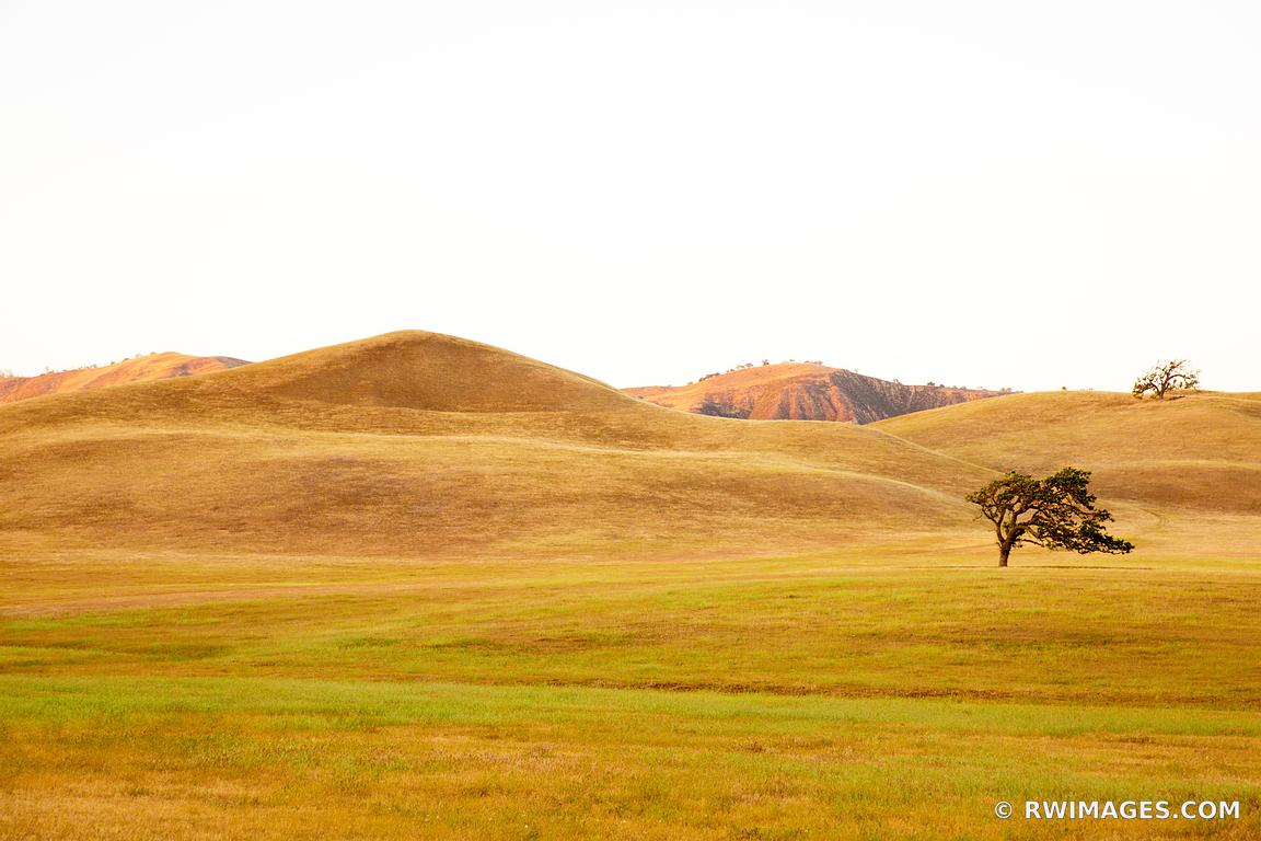 Photo Print of GOLDEN HILLS CENTRAL CALIFORNIA WINE COUNTRY Print ...