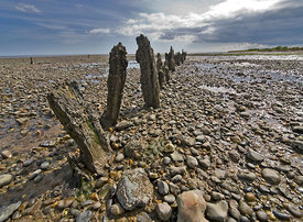 Seaworn_timbers_East_Mersea