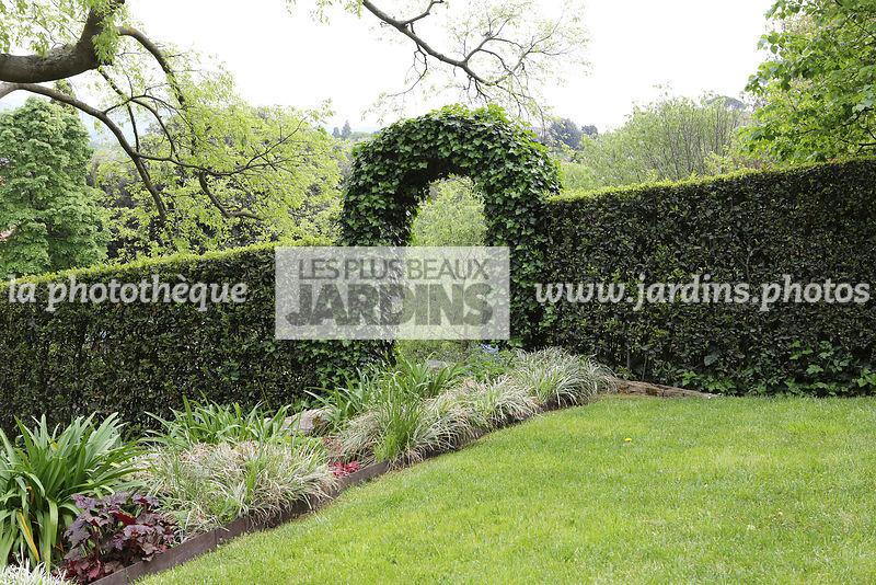 la phototh que les plus beaux jardins haie taill e. Black Bedroom Furniture Sets. Home Design Ideas