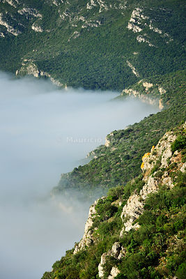 Arrbida Natural Park in a foggy morning. Portugal